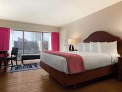 Flamingo Hotel In Las Vegas Vegas Com